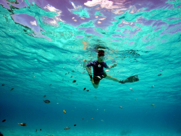 Snorkelen Todi The Ultimate Diving Experience